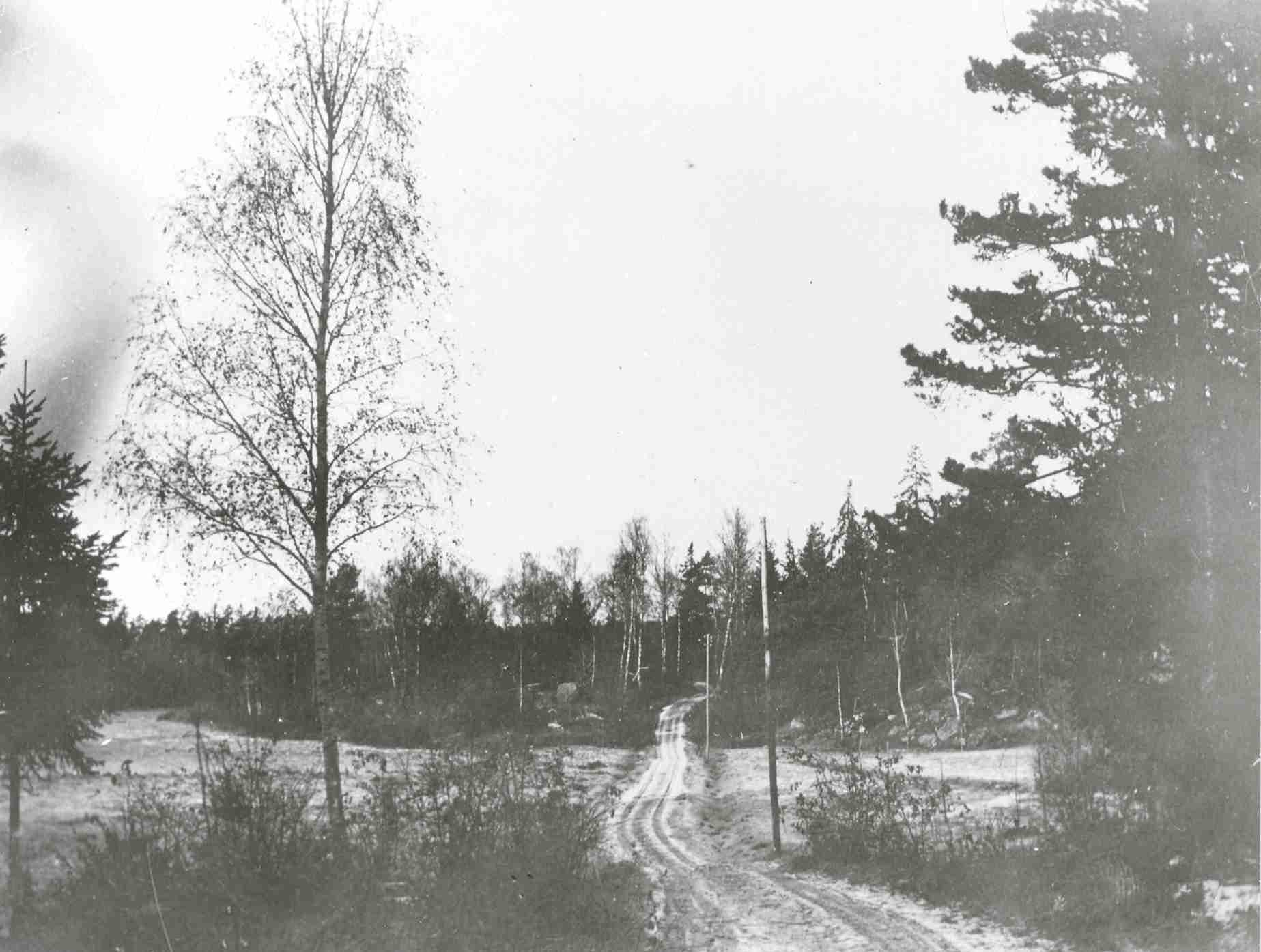 Gubbkärrsvägen, korsningen med Tältgatan 1917.